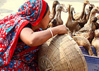 Building resilience against climate change: Women in Bangladesh lead the way