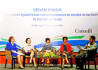 Taking stock of the 10-year progress on gender equality through CEDAW in Viet Nam