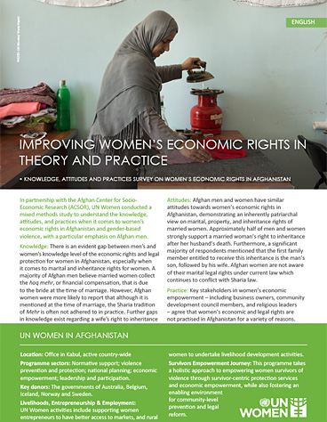 Improving women's economic rights in theory and practice