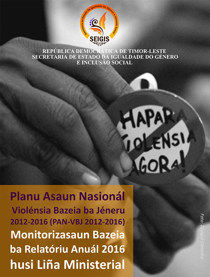 NAP GBV Monitoring report 2016