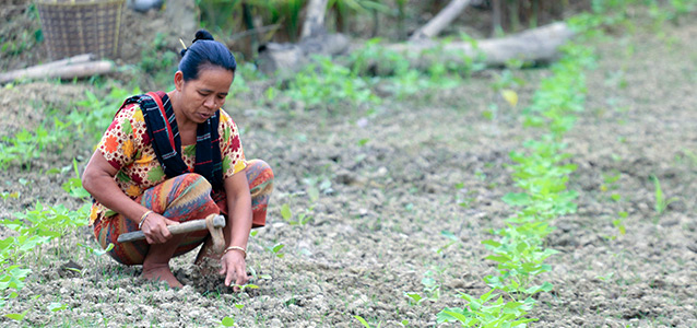 Bojjropodi Chakma, 44, started a successful garden after the landslide. Now, her garden not only helps her bring in income for the household, but also helps in supplementing her family's nutritional needs.. Photo: UN Women/Jewel Chakma