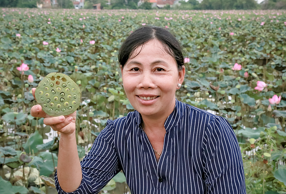 Strengthen women's livelihoods and participation for greater resilience to disasters and climate change in Viet Nam