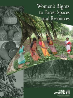 Women's Rights to Forest Spaces and Resources
