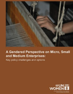 A Gendered Perspective on Micro, Small and Medium Enterprises