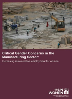 Critical Gender Concerns in the Manufacturing Sector