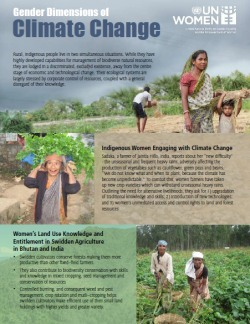 Factsheet: Gender Dimensions of Climate Change