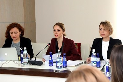 Sopo Japaridze, Assistant to the Prime Minister on Human Rights and Gender Equality Issues and the Chair of the Inter-Agency Commission presented the commission's annual report and discussed achievements and challenges within the previous year