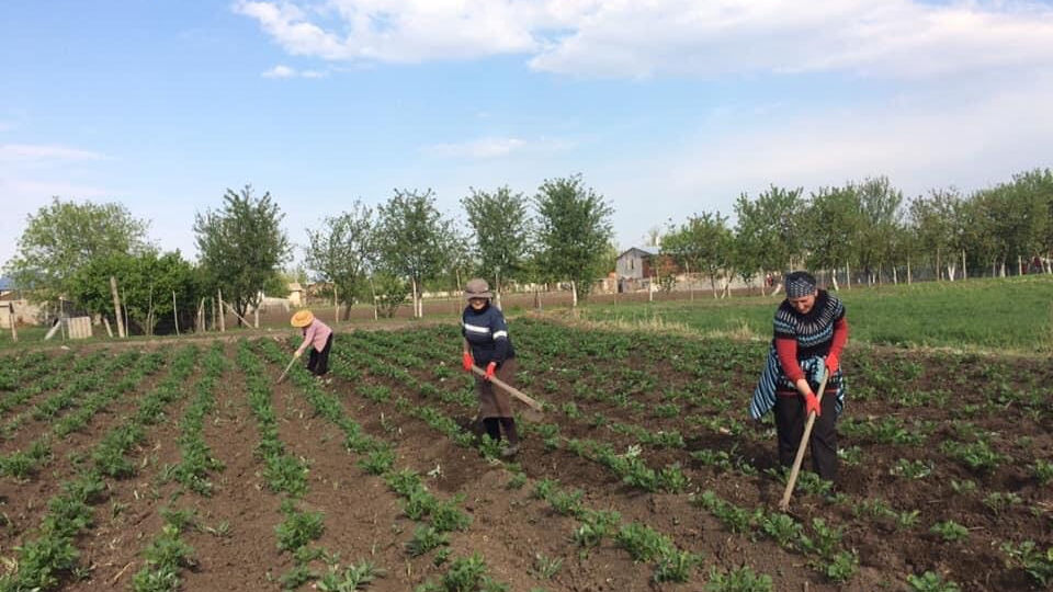 In Georgia, women farmers show solidarity amid COVID-19