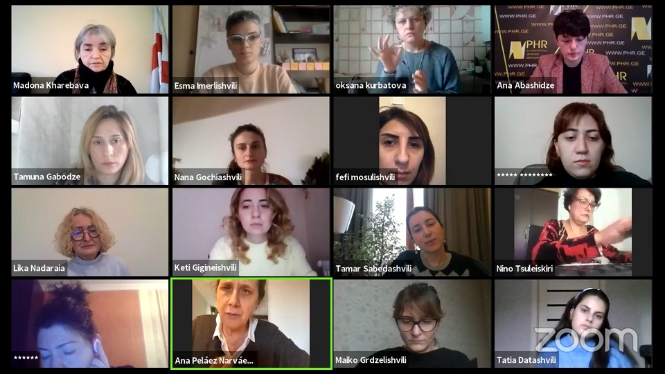 The virtual meeting between Ana Peláez Narváez and activists for the rights of women with disabilities in Georgia. Photo: UN Women