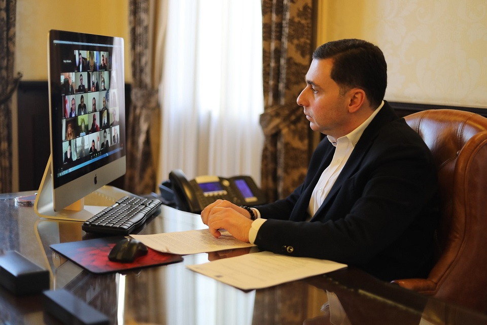 Giorgi Tkemaladze, First Vice-President of NALAG attending the online presentation of Gender Equality Strategy and Action Plan of NALAG. Photo: NALAG