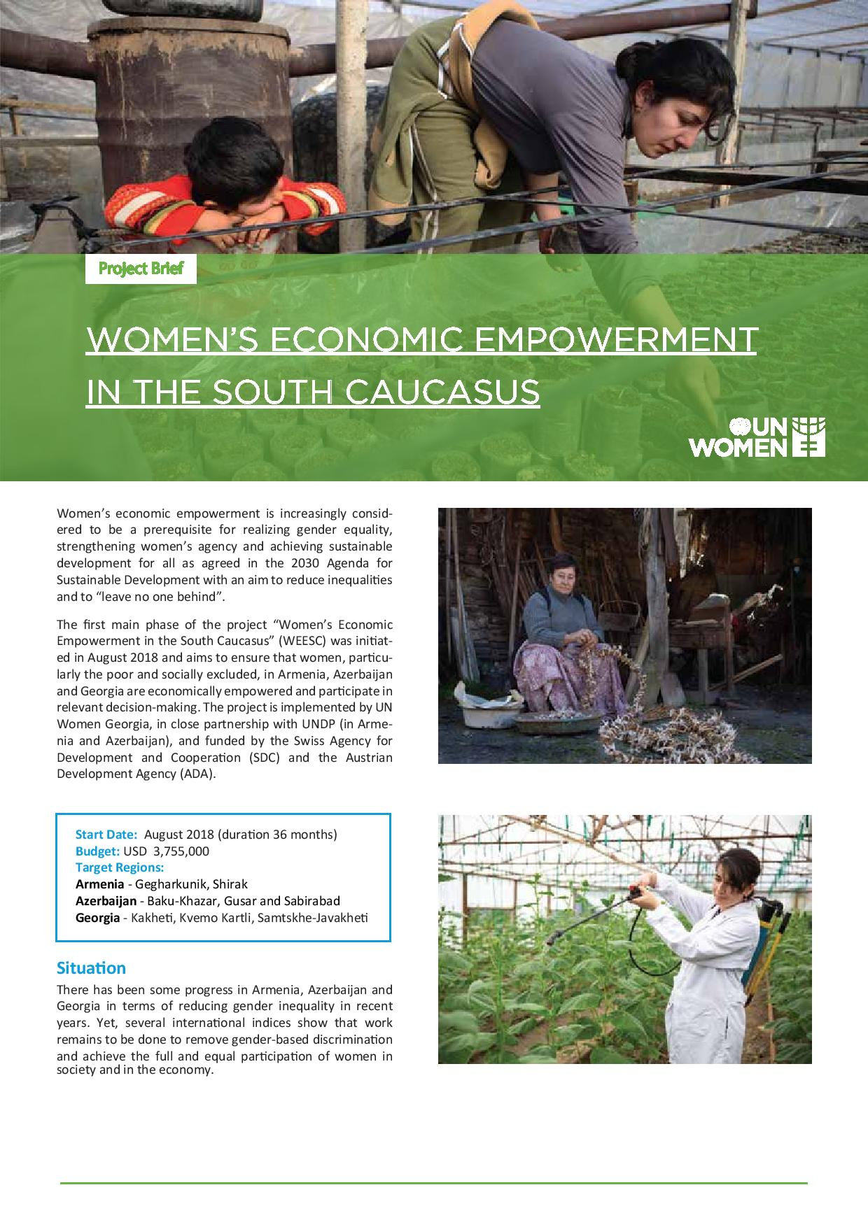 Women's Economic Empowerment in the South Caucasus