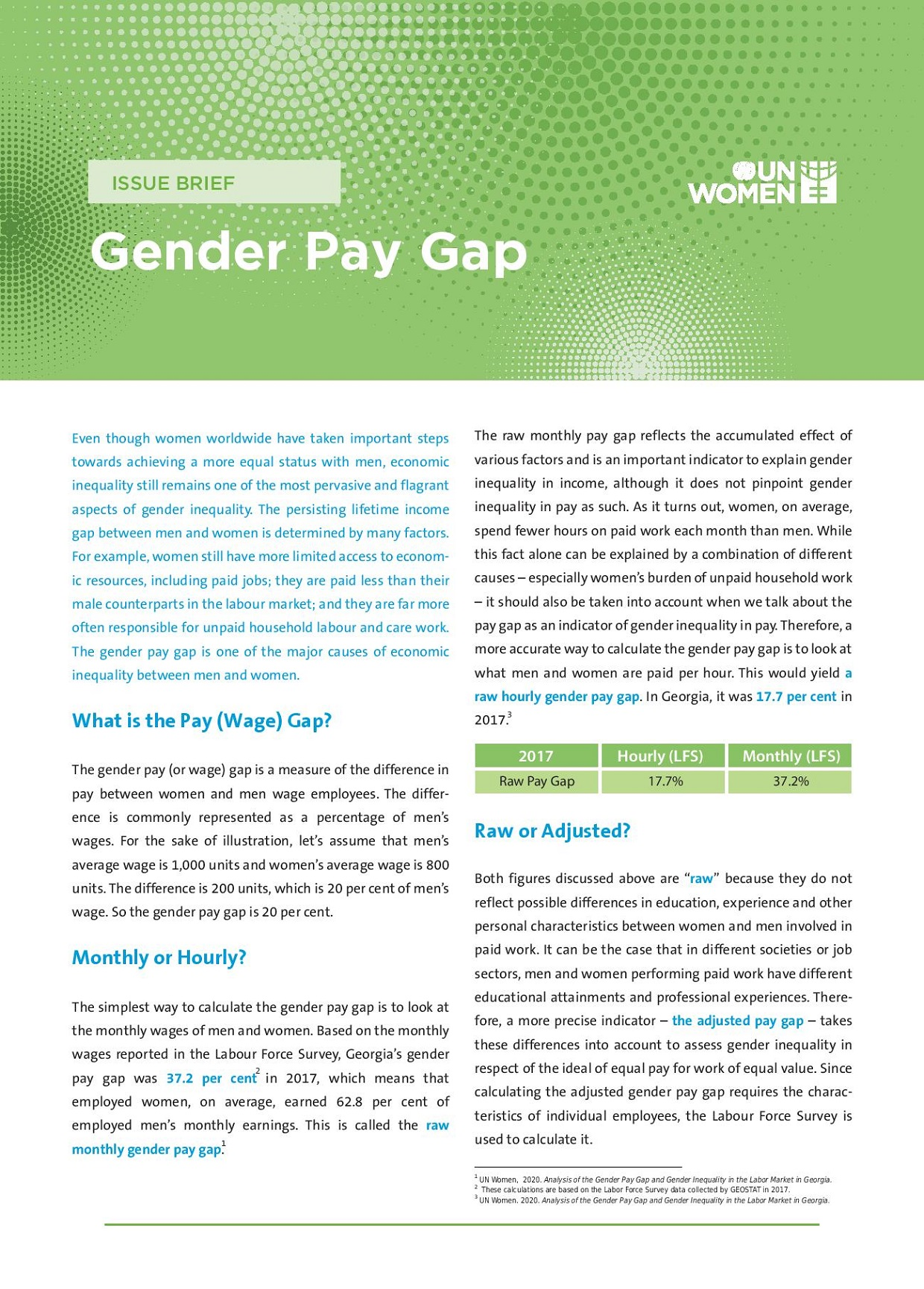 Gender Pay Gap Issue Brief