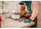 GOVERNMENT OF JAPAN AND UN WOMEN INCREASE LIVELIHOOD AND PROTECTION SERVICES FOR VULNERABLE WOMEN IN JORDAN