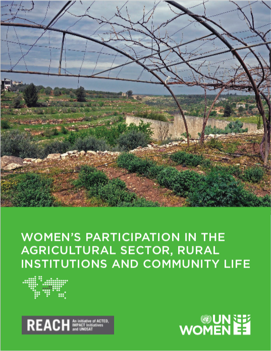 Women's participation in the agricultural sector, rural institutions and community life.