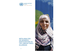 META-ANALYSIS ON WOMEN'S PARTICIPATION IN THE LABOUR FORCE IN JORDAN