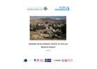 Gender development needs in Tafilah (Baseline Report)