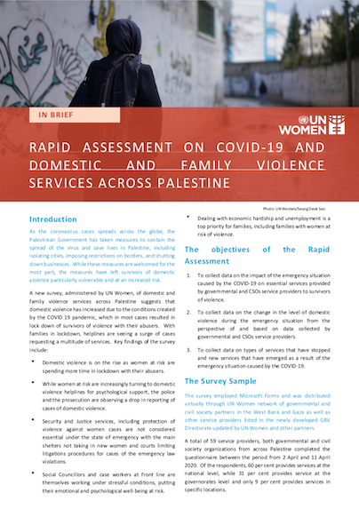 Rapid Assessment on COVID-19 and Domestic and Family Violence Services across Palestine