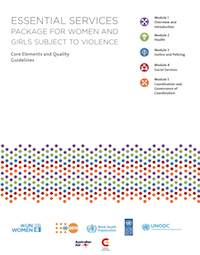 Essential Services: Package for women and girls subject to violence