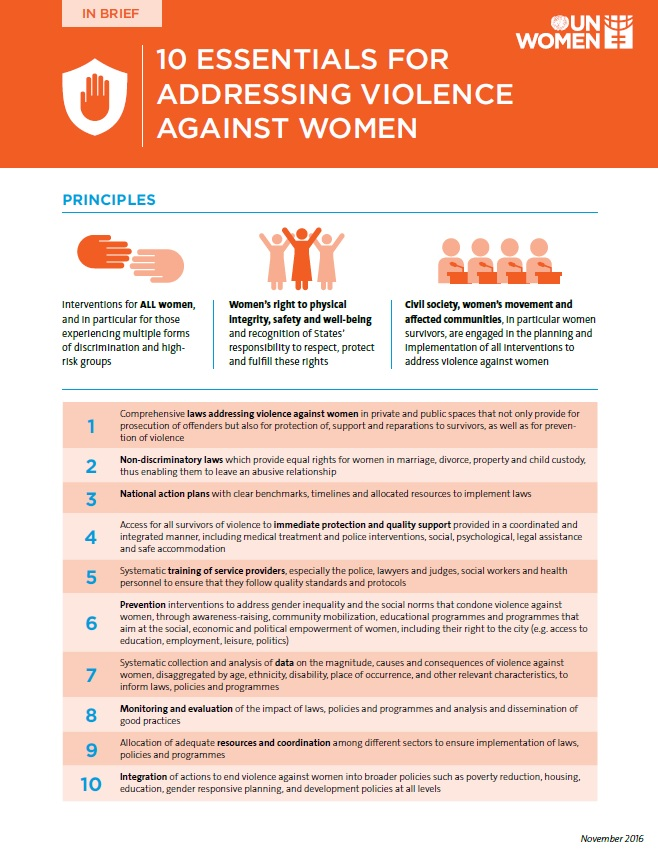Package of essentials for addressing violence against women