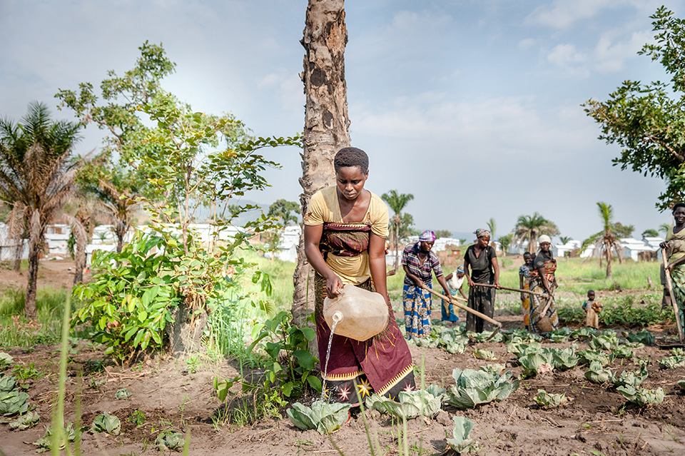 Women who are part of the agriculture programme gather early to attend to the crops they cultivate collectively.  Photo: UN Women/Catianne Tijerina