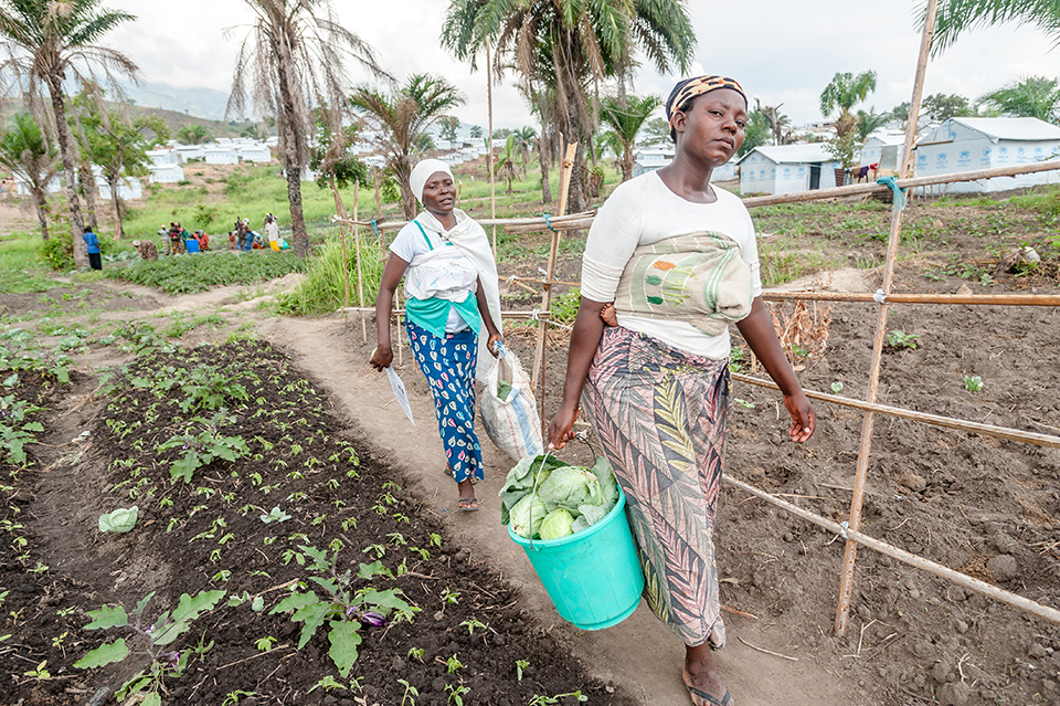 With UN Women's assistance, in 2015, 264 women refugees contributed to the camp's food security after being trained to grow vegetables.  Photo: UN Women/Catianne Tijerina