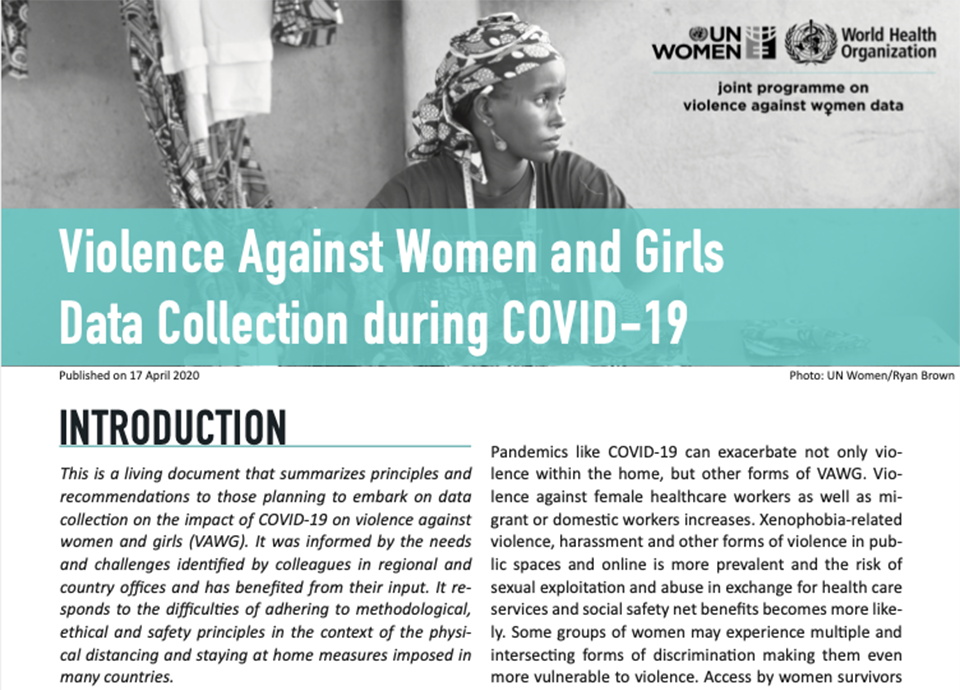 Violence against women and girls data collection during COVID-19