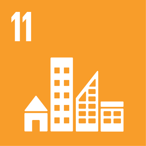 SDG 11 sustainable cities and communities
