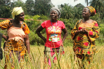 In Liberia, mobile banking to help Ebola-affected women traders