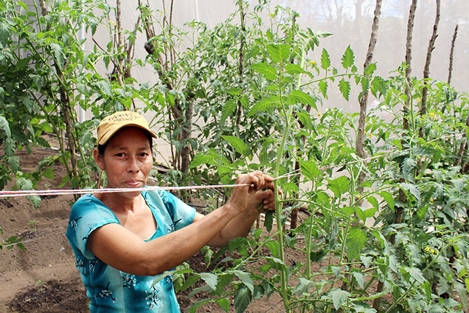 In El Salvador, rural women plant seeds of independence