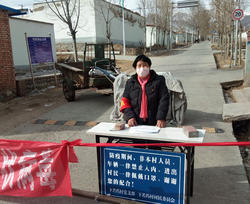 Roses in the battlefield: rural women farmers join the fight against COVID-19 in China