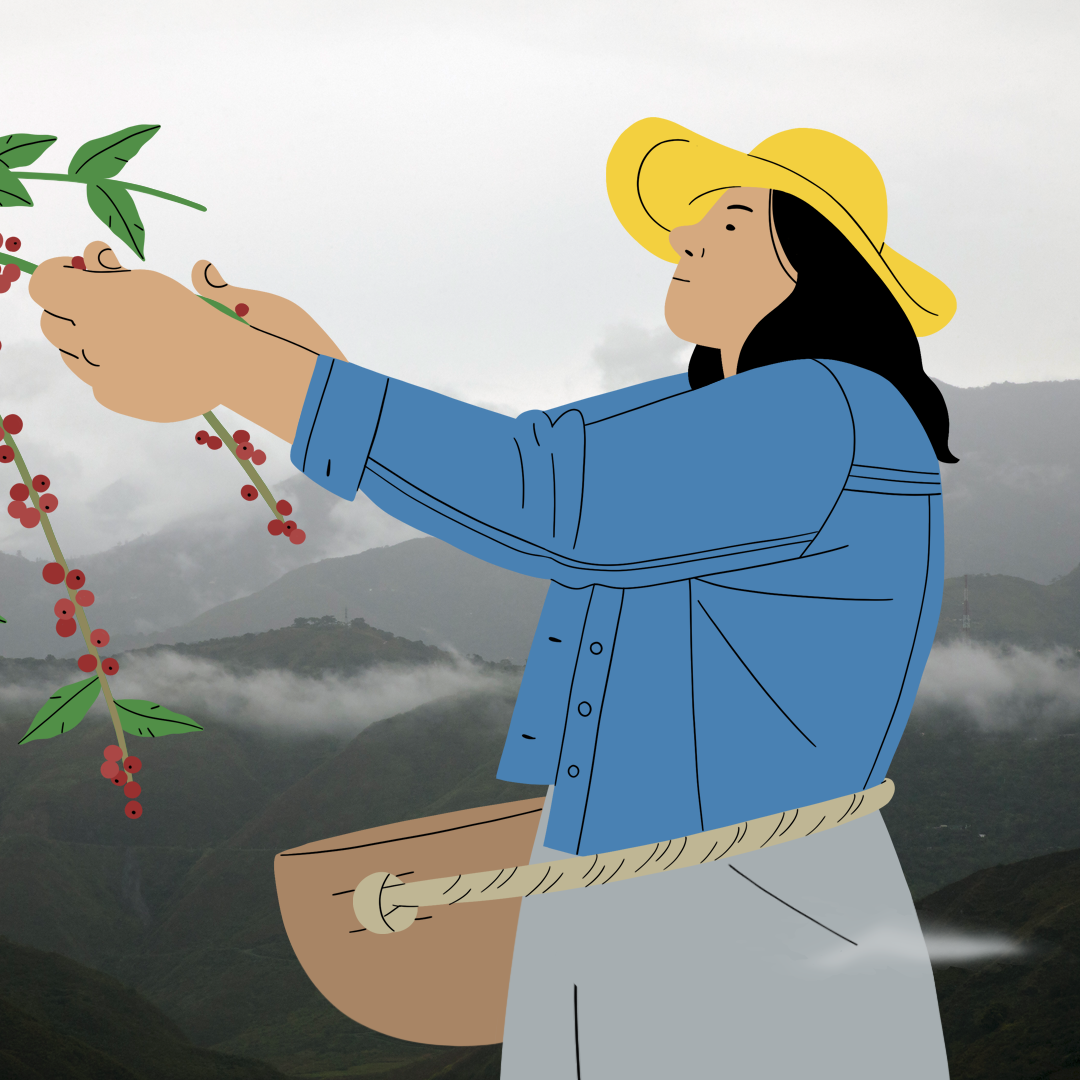 Illustration of women's leadership in agriculture