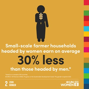 Small-scale farmer households headed by women earn on average 30% less than those headed by men.