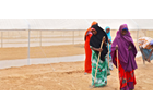 Braving dust storms, women plant seeds of hope at the Dadaab refugee camp