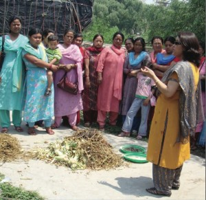 2011 SEED Winner Solid Waste Management
