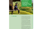 Brief for Policymakers: The State of  Gender Equality  and Climate Change in Viet Nam
