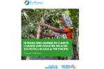 Integrating Gender in Climate Change and Disaster-related Statistics in Asia and the Pacific: Example Indicators