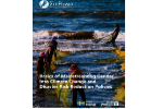 Basics of Mainstreaming Gender into Climate Change and Disaster Risk Reduction Policies