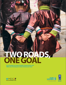 Two Roads, One Goal: Dual Strategy for Gender Equality Programming