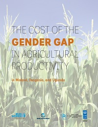 The Cost of Agricultural Productivity in Malawi, Tanzania and Uganda