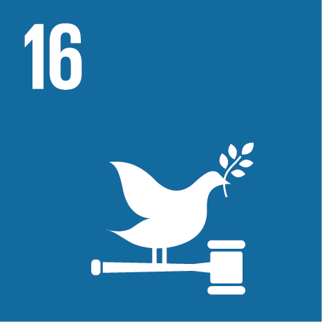 SDG 16 Peace Justice and strong institutions