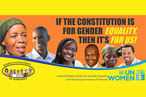 The women's movement in Zimbabwe mobilized women and men to vote yes for a new Constitution.