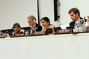 Ms. Puri delivers her opening statement to the 2013 Annual session of the Executive Board on 25 June, 2013. Photo credit: UN Women