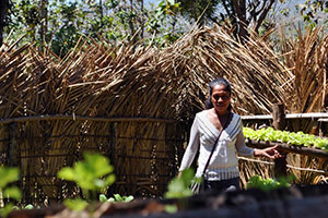 Rosalina Moniz in her self-help group's garden, one of the few places in the region for certain varieties of vegetables. Photo: UN Women/Aisling Walsh