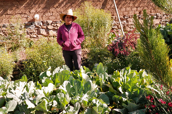 Recovering ancestral farming techniques to combat climate change and empower indigenous women in Peru