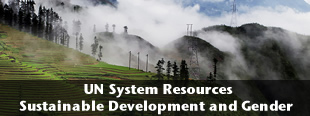 UN System Resources on Sustainable Development and Gender